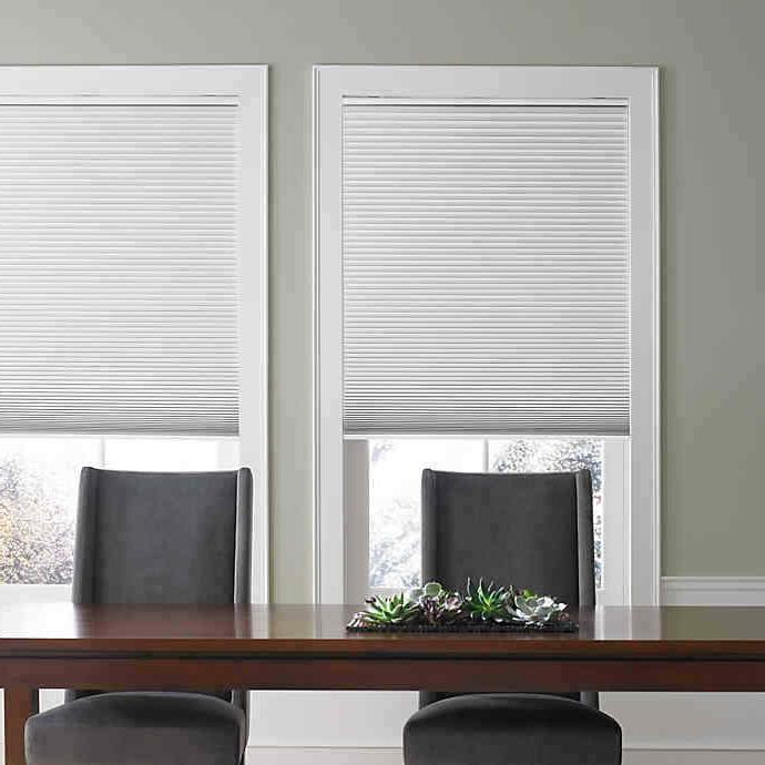 custom cut light filtering and blackout cordless